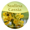 Discontinued <br> Sudina Cassia